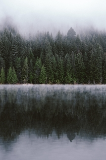 Moody morning at Trillium Lake