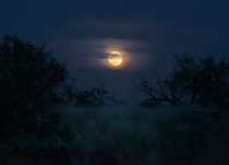 Moon Rise over the Southern Arizona grasslands Tucson AZ  andrewsantiago_