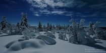 Moonlight shines on an untouched winter scenery in Lapland Finland  photo by Thomas Kast