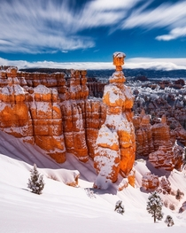 Moonlit Bryce Canyon covered in fresh snow - this looks like a daylight photo but is actually a min exposure taken at night during a full moon