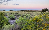 Moonrise in Petrified Forest National Park Arizona