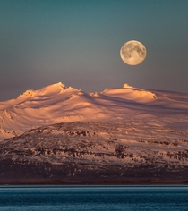 Moonset over the Icelandic mountains while the sun rises  - IG glacionaut