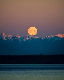 Moonset over the Olympic Mountains at sunrise seen from Seattle