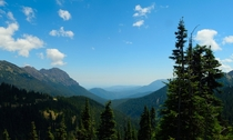 Moose Creek valley in Olympic National Park WA