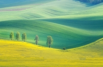 Moravian Fields Czech Republic  by Marcin Sobas