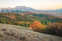 More fall colors in SE Idaho Bonneville Peak