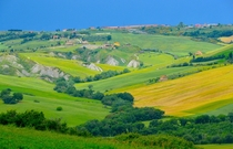 More Tuscan farmscapes