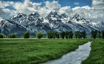 Mormon Row Meadow Grand Teton National Park  by Jeff Clow
