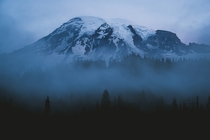 Morning at Mount Rainier National Park
