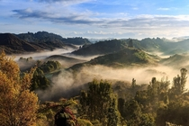 Morning fog in the valleys near Okere Falls NZ