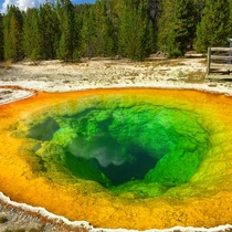 Morning Glory Pool Yellowstone