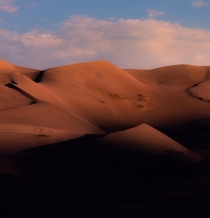 Morning light bathing the tallest dunes in North America Great Sand Dunes National Park Colorado