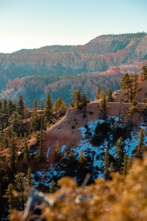 Morning light hitting the snow dusted hoodoos and pines along the cliffs in Bryce Canyon National Park UT