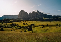 Morning light hitting the trees and gentle slopes of this landscape Alpe di Siusi Dolomites Italy