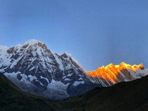 Morning rays turning Mt Annapurna into gold
