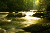 Morning sun spilling into Forney Creek at Great Smoky Mountains National Park Tennessee