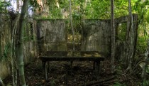 Mortuary operating table being reclaimed by the jungle in Brazil