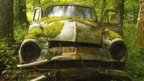 Moss covered car in Dordogne France
