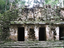 Moss-covered ruins at Yaxchilan  Photo by Hari Jagannathan Balasubramanian