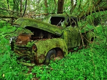 Moss-Covered Truck Michigan - Jason Rydquist