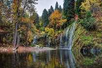 Mossbrae falls in Autumn is one of the most magical places I have ever been Water seeping out of the mountain side down the moss and into the river