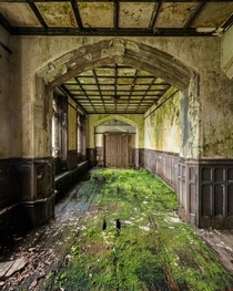Mossy Carpet in an old abandoned mansion Photo by romain_veillon