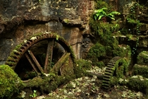 Mossy gears at an old gunpowder works Ponsanooth in Cornwall Photo by Mike Crowle