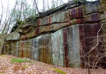 Mossy iron stained sandstone outcrop Allegheny National Forest PA