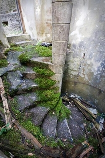Mossy spiral staircase at St Peters Seminary Cardross Scotland