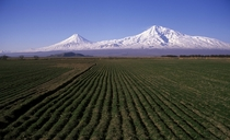 Mount Ararat  Photographer Hrair Hawk Khatcherian