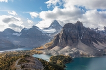 Mount Assiniboine soars above the changing foliage in British Columba Canada