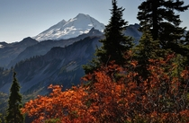 Mount Baker from Artist Point