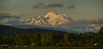 Mount Baker in the evening