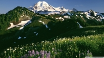 Mount Baker Washington