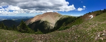 Mount Baldy New Mexico