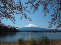 Mount Fuji view from Lake Kawaguchiko April