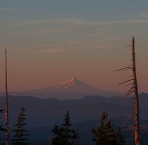 Mount Hood as seen from near the St Helens summit in Washington