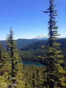 Mount Hood over Serene Lake Grouse Point Trail Mount Hood National Forest Oregon