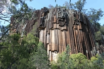 Mount Kaputar National Park near Narrabri New South Wales Australia   Dave Taylor