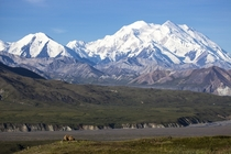 Mount McKinley Denali National Park and Preserve Alaska by Daniel A Leifheit