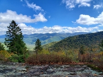 Mount Mitchell NC from Big Butt Trail