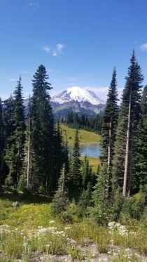 Mount Rainier Chinook Pass Washington state