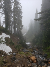 Mount Rainier National Park WA Shrouded in Fog