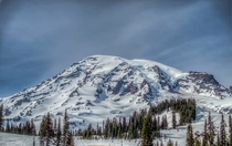 Mount Rainier viewed from the sunrise area taken by me George Matthew Cole