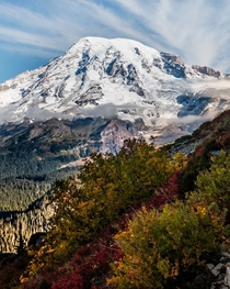 Mount Rainier with autumn color