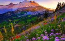 Mount Ranier Sunrise  X