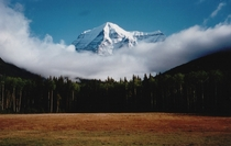 Mount Robson British Columbia Canada