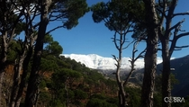 Mount Sannine-Lebanon Covered in snow Alt m