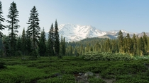 Mount Shasta in a haze from the Milepost  forest fire