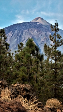 Mount Teide - Tenerife Canary Islands Pico del Teide Lava stone in foreground x